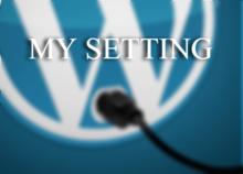 WordPress のこまごました設定をまとめてできるプラグインを書いてみた | Cyokodog