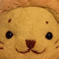 take64 (kouhei.takemoto) · GitHub