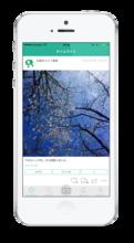 お散歩カメラ | 散歩の写真共有アプリ