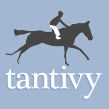 GitHub - tantivy-search/tantivy: Tantivy is a full-text search engine library inspired by Lucene and written in Rust