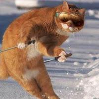 GitHub - keisukeYamagishi/detect