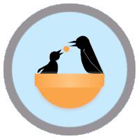 coderwall.com : hdknr's profile
