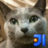 さよならsun.comのつづき 2012-03-26 - marsのメモ