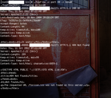 tcpflow: httpレスポンスボディをリアルタイムで見たいとき | Ore no homepage