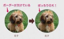 CSS3のborder-radiusで画像を円形に切り抜いてボーダーを付ける時のハック | 愛知県 名古屋のホームページ制作ならSPOT(スポット)