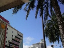 Facebook沖縄ユーザーグループが10,000名達成し世界最大規模の地域グループに | 沖縄に移住しホームページ制作で頑張る!毎日「沖縄移住生活/琉球ライフ」
