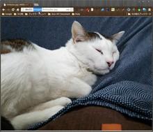 mod_small_light で動的に画像リサイズ - akishin999の日記