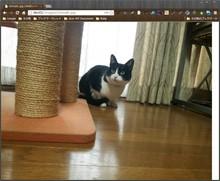 mod_dims で動的に画像リサイズ - akishin999の日記